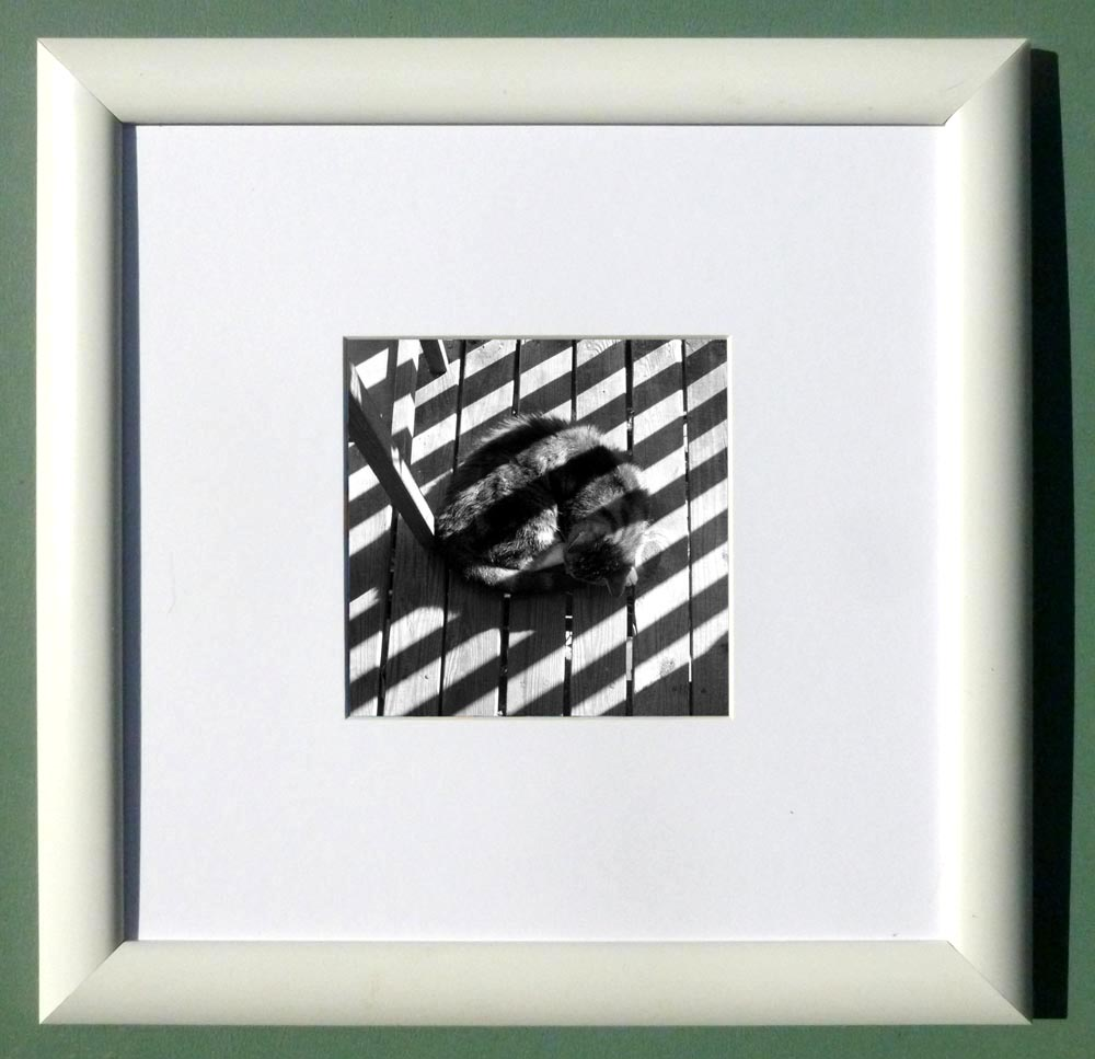 "Stripes on Stripe, 4"" x 4"", white frame"