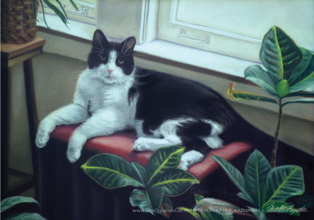 """Bandit"", 16"" x 23"", pastel, 2004, one very special cat."