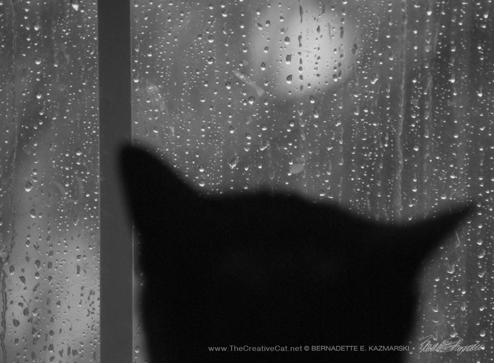 Of the Rain and Giuseppe, Dreaming