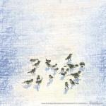 Birds in Snow, square, 6 x 6