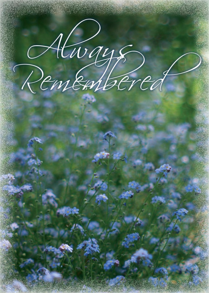 Remembering Forget Me Nots