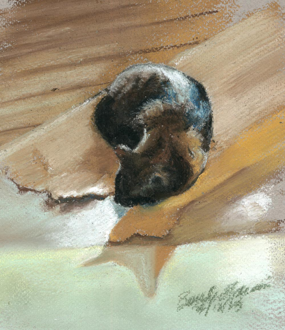 """""""Tonal Nap"""", pastel on pastello paper, 8"""" x 10"""" © Bernadette E. Kazmarski"""