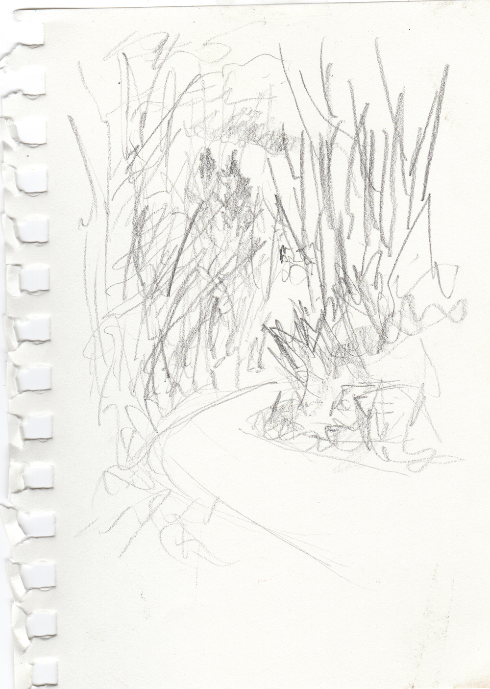 "Trail Sketch, 4"" x 6"", pencil © Bernadette E. Kazmarskiu."