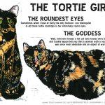The Tortie Girls