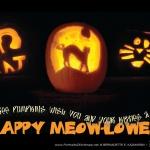 We Three Pumpkins 2