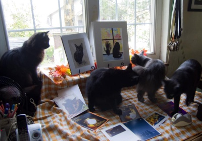 Ophelia crashes the black cat party!