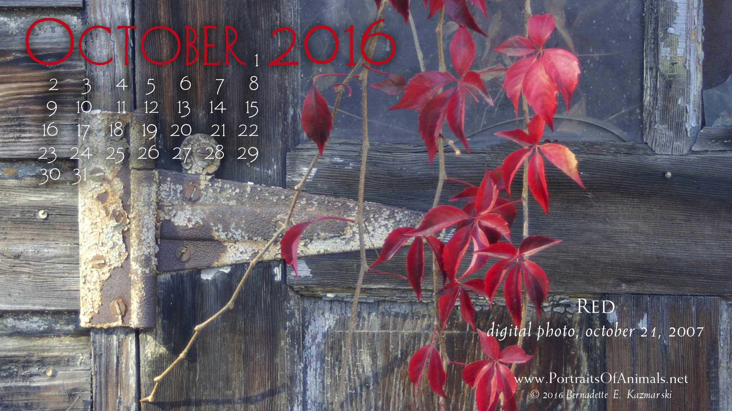 """Red"" desktop calendar 2560 x 1440 for HD and wide screens."