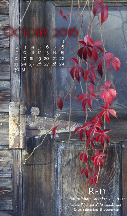 """Red"" desktop calendar, for 400 x 712 for mobile phones."