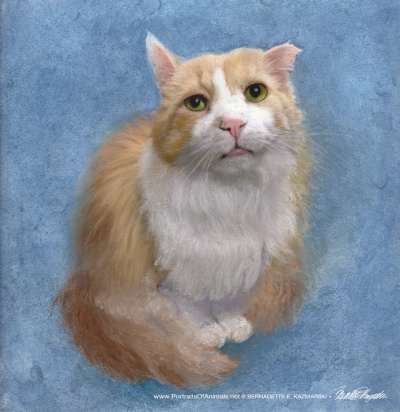 """Tommy"", pastel, 10"" x 12"" © Bernadette E. Kazmarski"