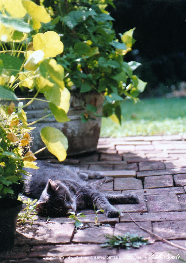 September Morning in the Garden