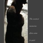 Kelly Twice Animal Sympathy Card