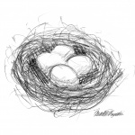 """Bird's Nest"", pencil, 6″ x 6″, 2002 © Bernadette E. Kazmarski"