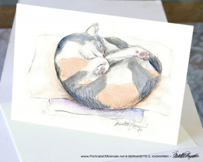 Peaches' Nap Spot Fine Art Card