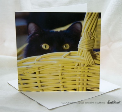 Surprise! Feline Photo Card