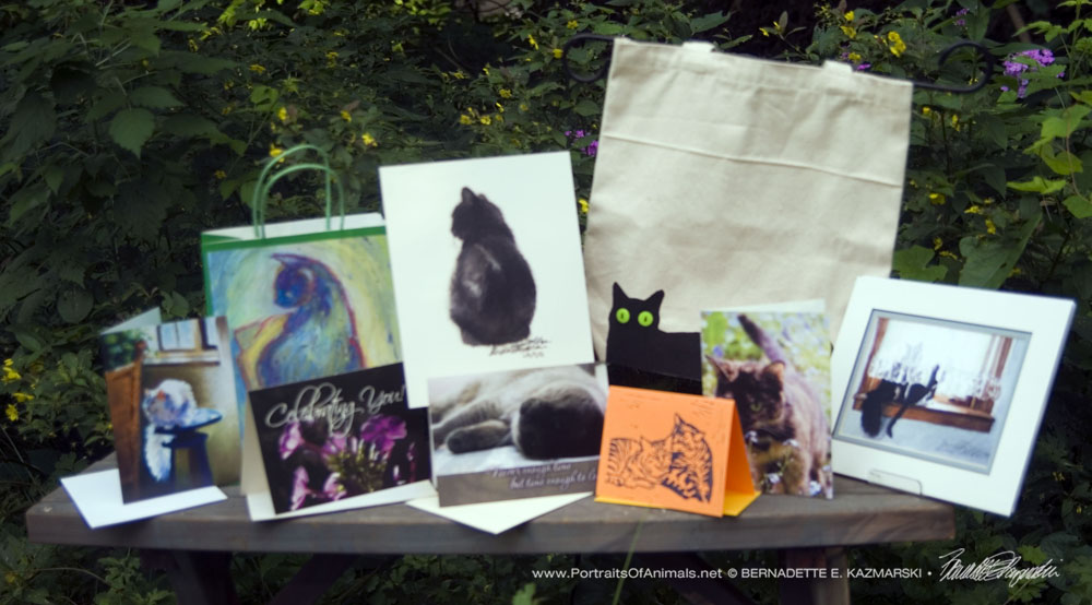 May 2017 Feline Sampler Box