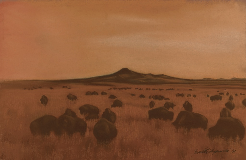 """Shadow of Bison "", pastel on 26.5"" x 17.5"" on Hahnemuhle sanded watercolor paper."