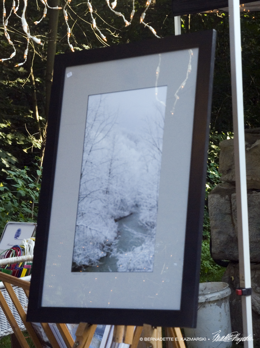 """Frosted"", matted and framed. Framed size is 20 x 30."