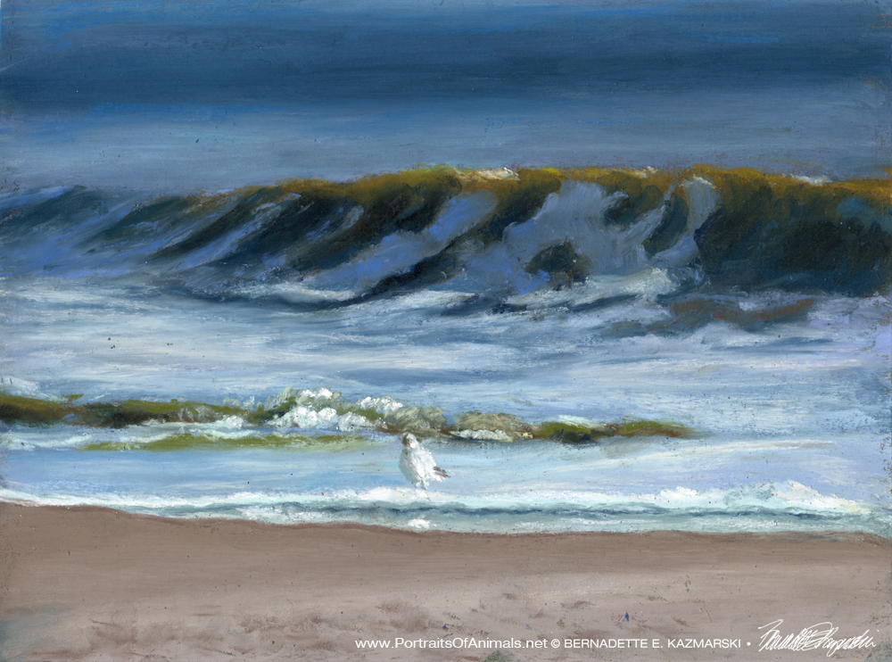 I Want To Be Where That Gull Is Standing, Pastel, 9 x 12 © Bernadette E. Kazmarski