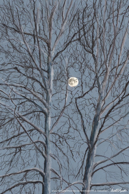 """Sycamore Moon"", pastel, 14"" x 20"" © Bernadette E. Kazmarski"