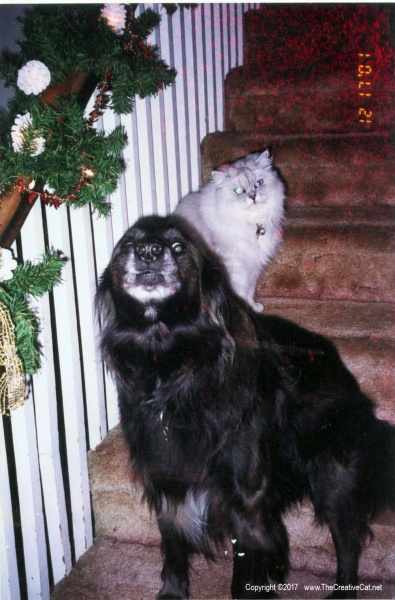 Rocky and Bullwinkle on the steps.