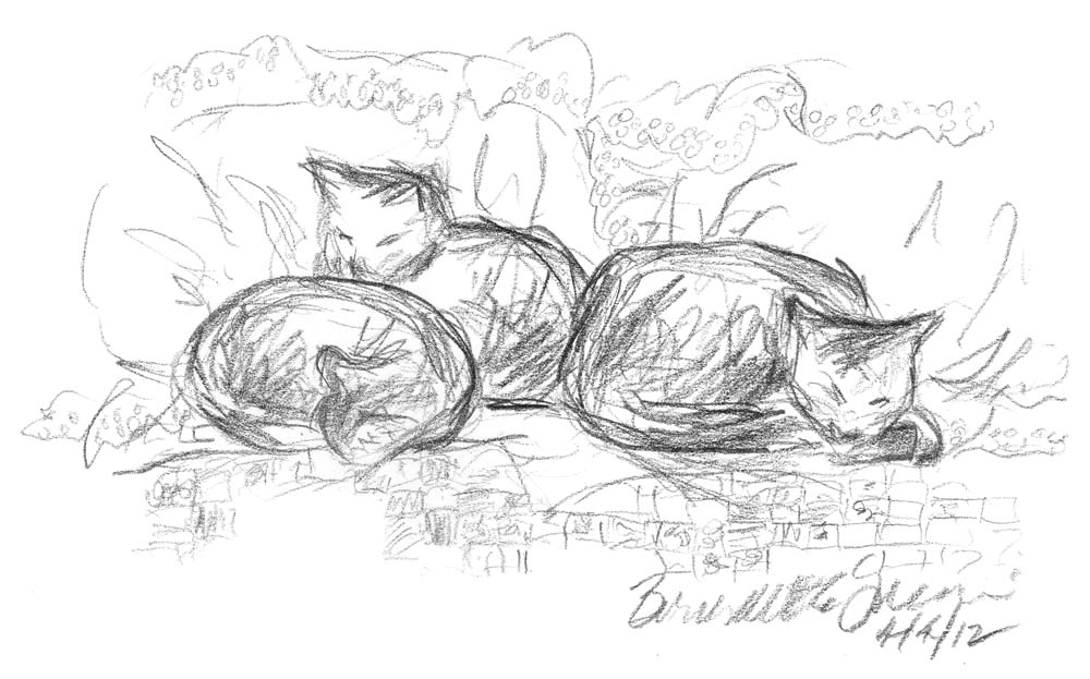 Curled on the Bed, 5 x 8, pencil © Bernadette E. Kazmarski
