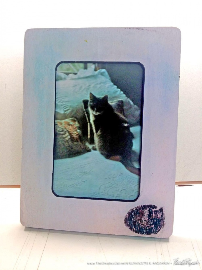 Peaceful Nap Feline Photo Frame