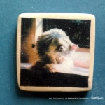 "A Warm Bath 1"" Square Magnet"