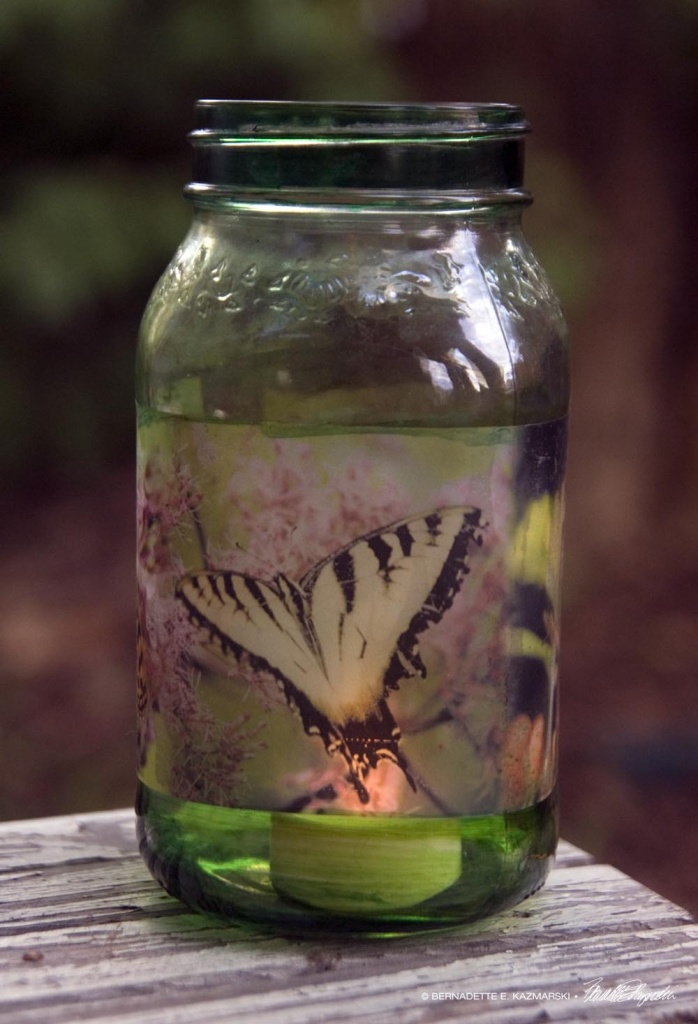 Butterflies Votive, small
