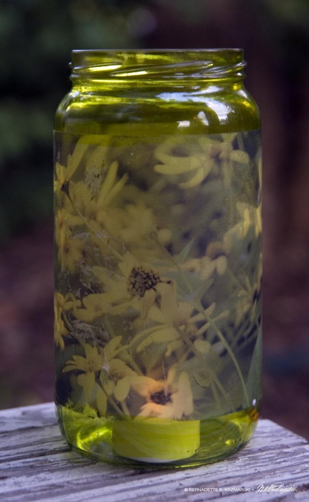 Woodland Sunflowers votive, tall
