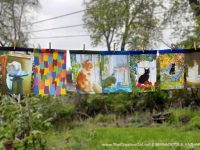 Spring In-person and Virtual Open House Update 2: New Feline Garden Flags