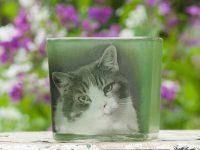 For Memorial Day, a Custom Pet Memorial Votive