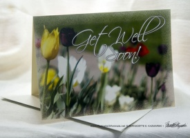 Greeting Cards Inspired by Spring and Summer Flowers