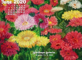 June Nature Desktop Calendar: Greenhouse Gerberas