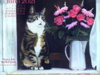 June Featured Artwork and Desktop Calendar: Paws for Reflection