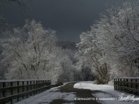 "Dramatic Light Accepted Into ""Pennsylvania Winter"" Exhibit"