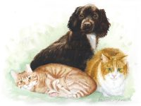 Marketplace: Commissioned Portrait Specials for Special People